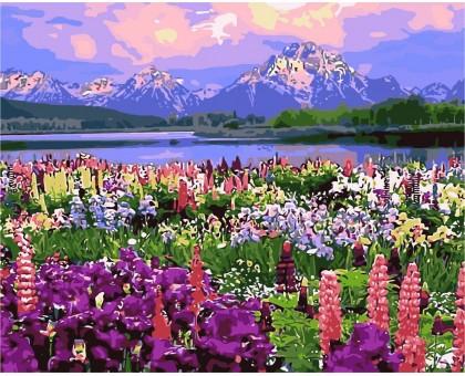 Картина по номерам Полевые цветы