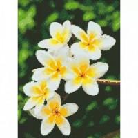 Алмазная мозаика Гавайский цветок