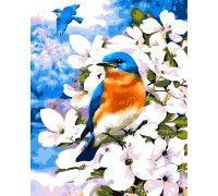 Картина по номерам Птичка на яблоневой ветке