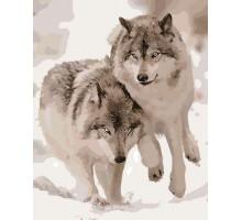 Картина по номерам Снежные волки