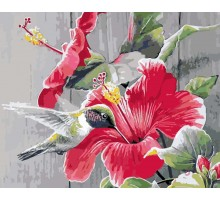 Картина по номерам Колибри с цветком