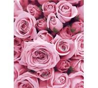 Рисование по номерам Нежные розы