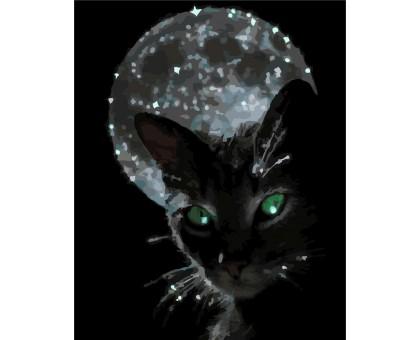 Картина по номерам Ночная жизнь