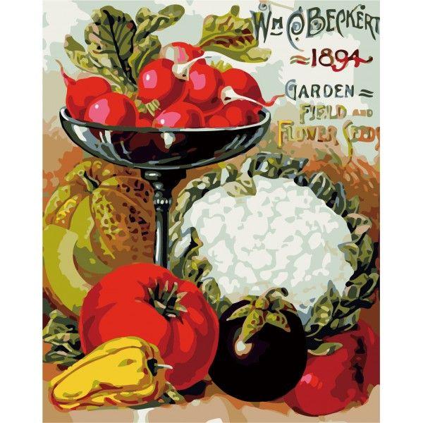 Картина по номерам Овощное разнообразие