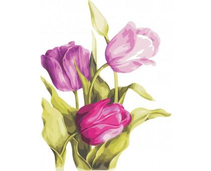 Картина по номерам Нежные тюльпаны