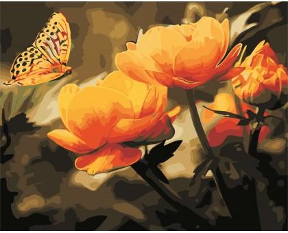Картина по номерам Желтые цветы и бабочка