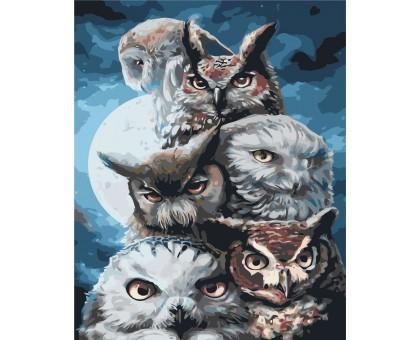 Картина по номерам Ночные охотники