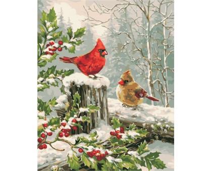 Раскраска по номерам Зимние птички