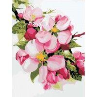 Картина по номерам Яблоневый цвет