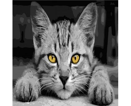 Картина по номерам Серый кот