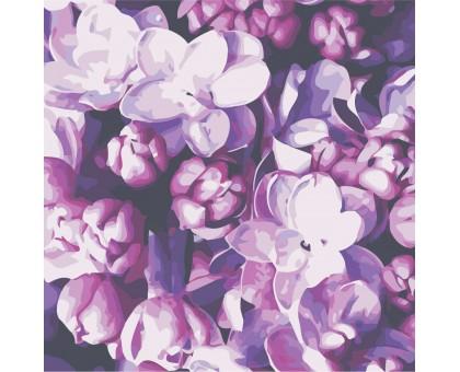 Картина по номерам Цветы сирени