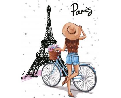 Картина по номерам По улицам Парижа