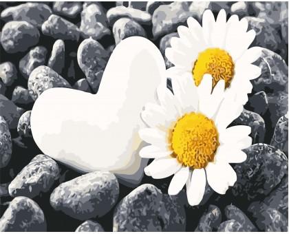 Картина по номерам Ромашки и сердце