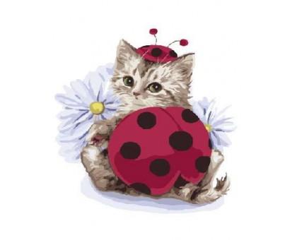 Картина по номерам Котик-солнышко с ромашкой