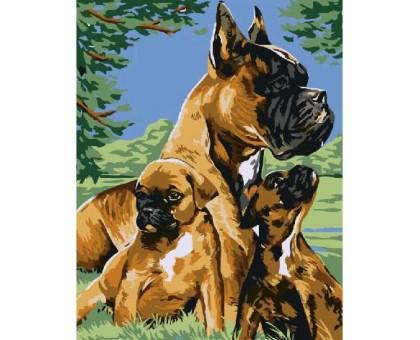 Картина по номерам Боксер со щенками