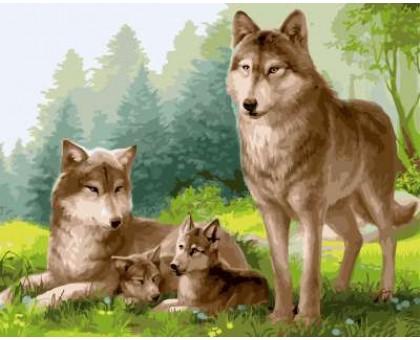 Раскраска по номерам Волчата