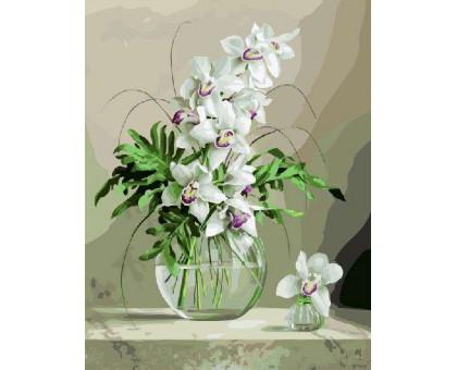 Картина по номерам Белая орхидея