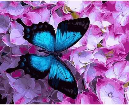 Картина по номерам Голубой махаон