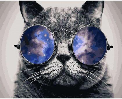 Картина по номерам Космический кот