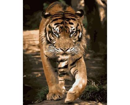 Картина по номерам Грация тигра