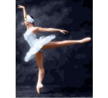 Картина по номерам Волшебство балета
