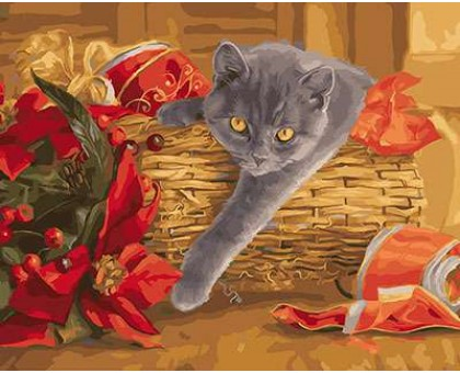 Картина по номерам Шотландский котик