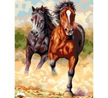 Картина по номерам Степные лошади