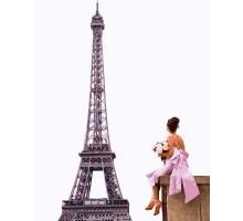 Картина по номерам Ее парижские мечты