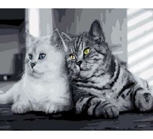 Картина по номерам Кошачья парочка