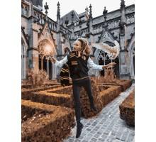 Картина по номерам Волшебник Люмус