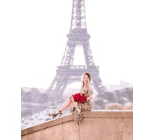 Картина по номерам Розы Парижа