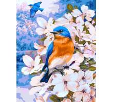 Картина по номерам Птичка на яблоне