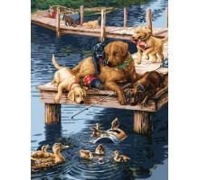 Картина по номерам Лабрадоры на пристани