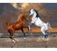 Картина по номерам Лошади на берегу океана