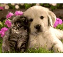 Картина по номерам Котенок и щенок лабрадора