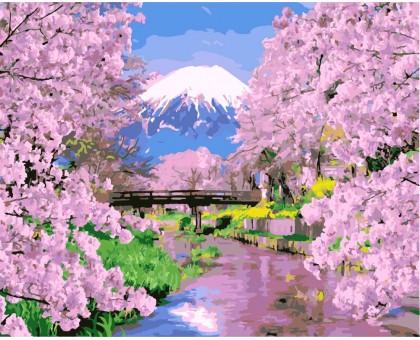 Картина по номерам Цветущая сакура