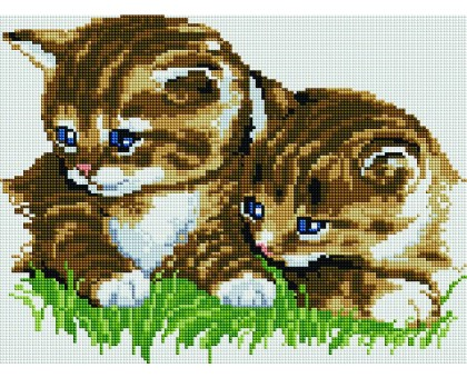 Картина по номерам Маленькие котята