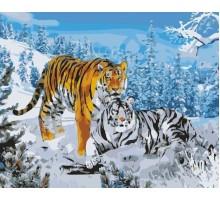 Картина по номерам Два тигра