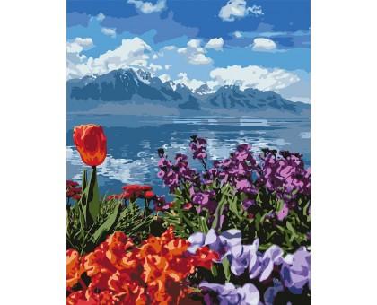 Раскраска по номерам Цветы и горы