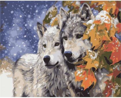Раскраска по номерам Пара волков