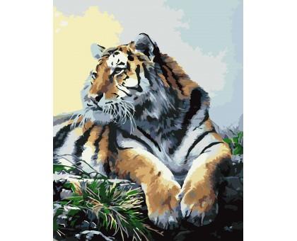 Картина по номерам Тигр