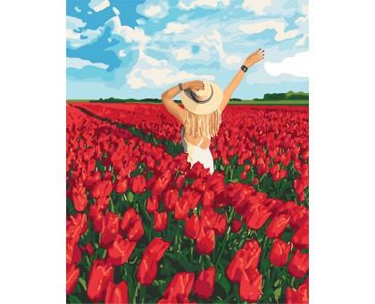 Раскраска по номерам Поле тюльпанов