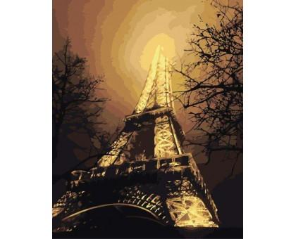 Картина по номерам Ночной вид на Эйфелеву башню