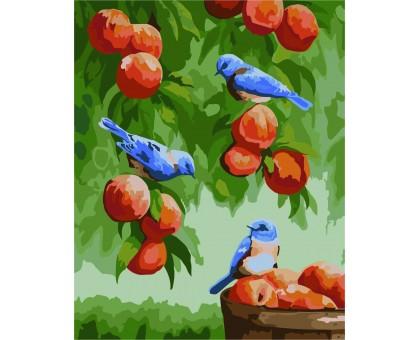 Картина по номерам Дрозды и персики