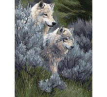 Картина по номерам Волчья пара