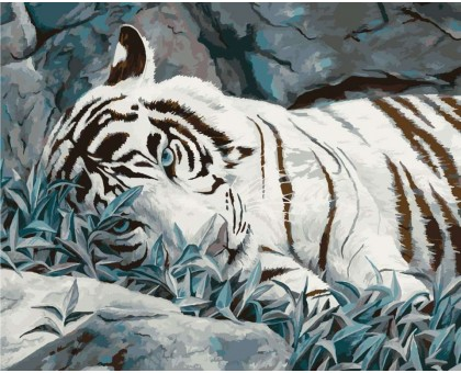 Картина по номерам Белый тигр