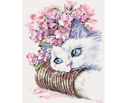 Картина по номерам Белый котик