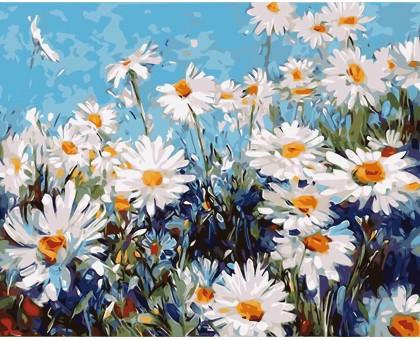 Картина по номерам Ромашковая поляна