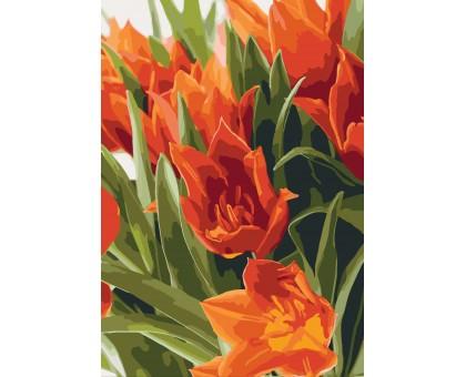 Картина по номерам Яркие тюльпаны