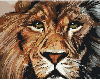 Картина по номерам Львиный взгляд